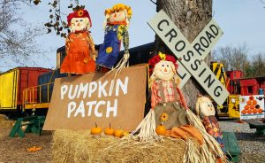 Pumpkin Patch Trains